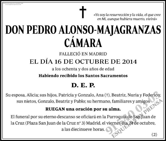 Pedro Alonso-Majagranzas Cámara